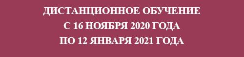 Дистанционное обучение с 16 ноября 2020 года по 12 января 2021 года
